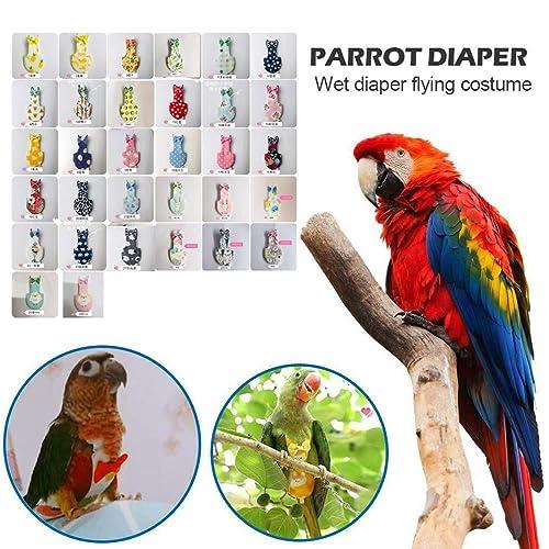 Buy Gdpowerseller Bird Parrot Diaper Flight Suit Nappy Clothes For Conure Parakeet Cockatiel Pigeo Budgerigarbudgielovebird Green Flower Pots Online In Kenya B07slymc2x